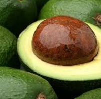 Avocado Crude