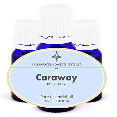 Caraway essential oil calms the nerves and soothes mental fatigue, while settling the stomach, nervous digestion, colic, flatulence and gastric spasms.
