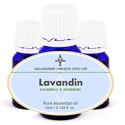 Lavandin essential oil helps you feel more relaxed, easing sore muscles and joints, relieving muscle stiffness and clears the lungs and sinuses.