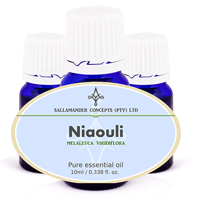 Niaouli Essential Oil helps to increases concentration and clears the head, while lifting the spirits. It has wonderful antiseptic properties.