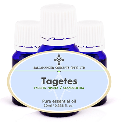 Tagetes is used for chest infections, coughs and catarrh, dilating the bronchi, facilitating the flow of mucus and can be used in cases of skin infections.
